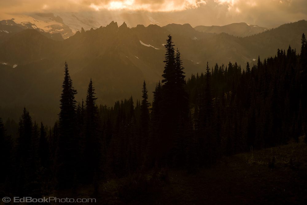 warm late evening light Dewey Peak in the William O Douglas Wilderness, Wenatchee National Forest south of Chinook Pass viewed from the Pacific Crest Trail.