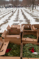 Goshen, New York - Boxes of wreaths wait to be used at Orange County Veterans Memorial Cemetery before a Wreaths Across America ceremony on Dec. 16, 2017. About 3,000 wreaths were placed at graves, and small American flags were added to the wreaths at veterans' graves.