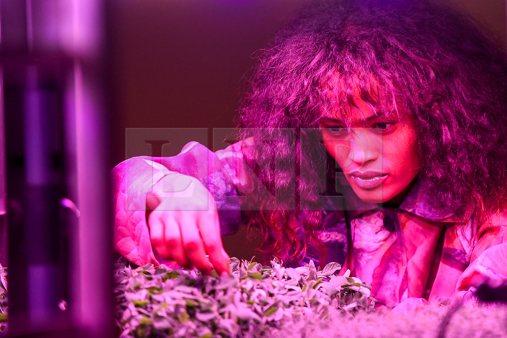 "© Licensed to London News Pictures. 17/10/2019. LONDON, UK. A model poses next to an exhibit demonstrating Mars farming. Preview of ""Moving to Mars"" at the Design Museum. The exhibition explores how sending humans to Mars is a frontier for science as well as design and features over 200 exhibits from NASA, the European Space Agency together with new commissions.  The show is open 18 October to 23 February 2020.  Photo credit: Stephen Chung/LNP"
