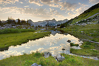 Stream flowing in an alpine basin of Mount Rohr, Coast Mountains British Columbia Canada
