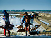 20 FEBRUARY 2019 - BAN LAEM, PHETCHABURI, THAILAND: on one of the first days of the 2019 salt harvest in Ban Laem, Thailand. Ban Laem's salt fields are expanding because salt harvesters in Samut Sakhon and Samut Songkhram,  closer to Bangkok, are moving to Ban Laem as their land is turned into industrial parks.       PHOTO BY JACK KURTZ
