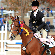 Midsouth 3 Day Event and Team Challenge Horse Trials