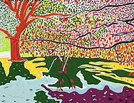 Drawing of Autumn leaves and trees in Brooklyn's Prospect Park.