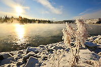 Frost on the Yukon River