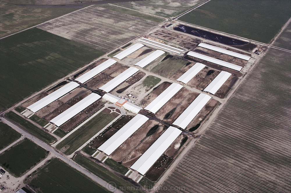 Aerial photograph of Maddox Dairy in Riverdale, California.