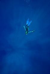 marine wildlife photographer David B. Fleetham dives through the ashes of his friend, James D. Watt,, Kailua Kona, Big Island, Hawaii, USA, Pacific Ocean, Pacific