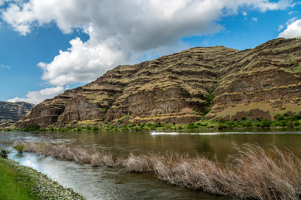 Springtime jet boating along the Snake River at the bottom of Hells Canyon from the Washington side looking at volcanic cliffs on the Idaho Side. Licensing and Open Edition Prints.