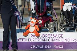 Team Netherlands Mascotte, Voets Sanne, Hosmar Frank, Van den Dulk Nicole, Van der Horst Rixt, Heuitink Joyce, (NED) <br /> Prize Giving Teams<br /> Para-Dressage FEI European Championships Deauville 2015<br /> © Hippo Foto - Jon Stroud<br /> 19/09/15