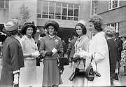 30/06/1962 <br /> 06/30/1962<br /> 30 June 1962<br /> Irish Sweeps Derby at the Curragh Racecourse, Co. Kildare. At the Derby were (l-r): Miss Yvonne McClintock, Lady Jane Stanhope, Lady Avenn Stanhope and Miss Jean McClintock.