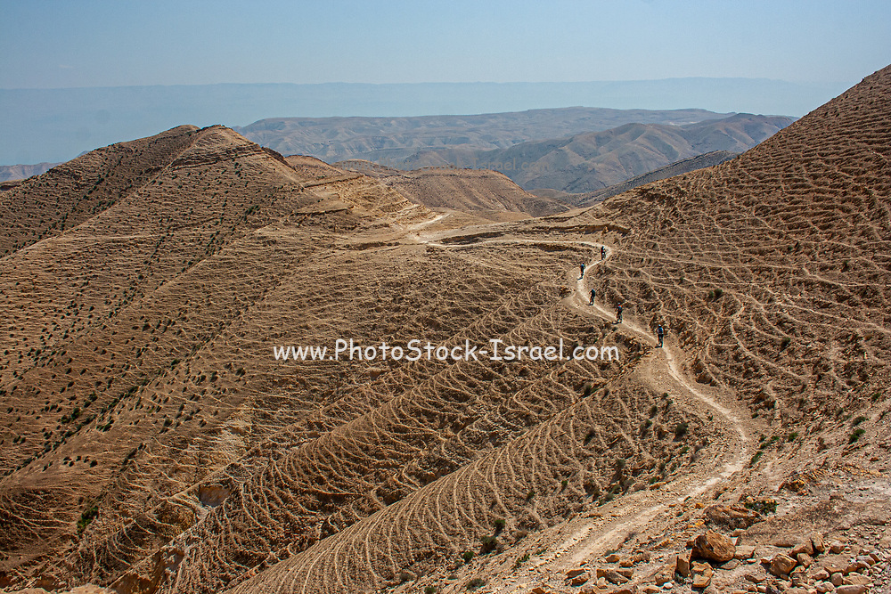Group of off road cyclists Extreme sports in the Judaean Desert