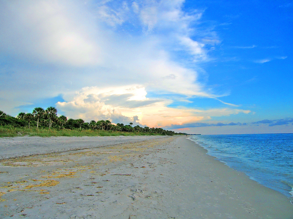 Caspersen Beach in Venice, Florida. This is one of the best beaches for finding fossils, particularly shark teeth.