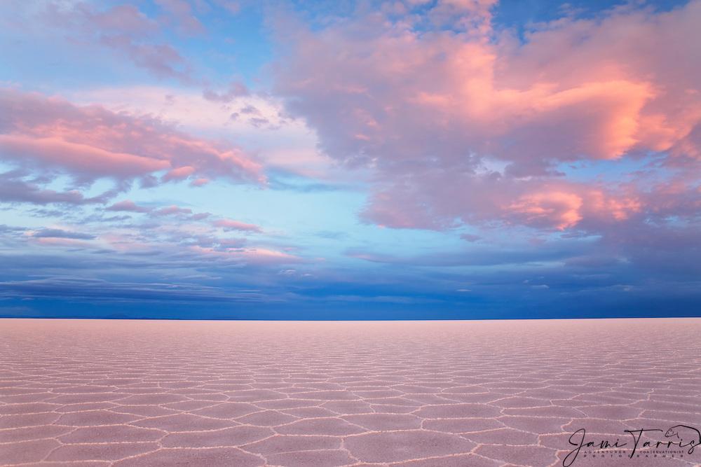 Pink hexagon patterns under billowy clouds at sunset on the Salar de Uyuni,  Bolivia,South America