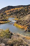 Vertical of Rio Grande in autumn