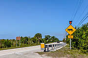 A RADS wildlife crossing zone for Florida panthers on US 41 at Big Cypress National Preserve, where many panthers are hit by cars.