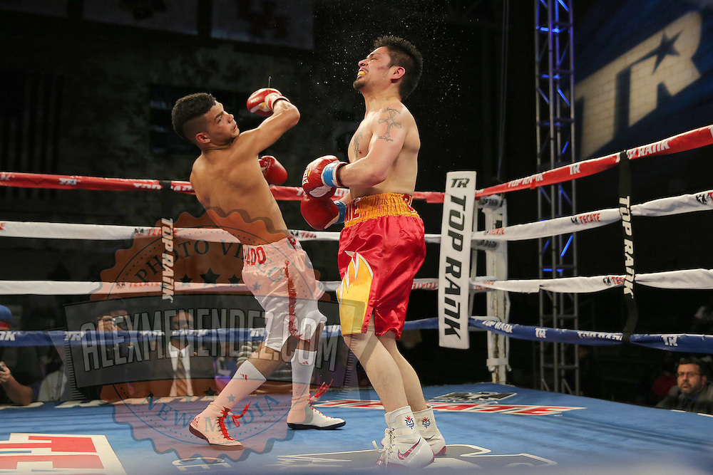 TAMPA, FL - FEBRUARY 28:  Neslan Machado( L) lands an uppercut on Ernesto Garza during the SoloBoxeo Tecate boxing match at the University of South Florida Sundome on February 28, 2015 in Tampa, Florida. Machado won the bout by decision.  (Photo by Alex Menendez/Getty Images) *** Local Caption *** Ernesto Garza; Neslan Machado