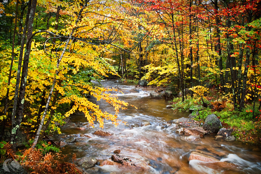 New England fall color is as haven for leafpeepers. Autumn color is on display throughout the fall as cooler temperatures creep southward.