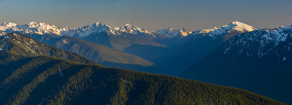 Southern Olympic skyline and Hoh River Valley, May, late afternoon light, view from Hurricane Ridge, Olympic National Park, WA, USA