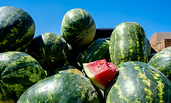 Watermelons for sale in Taliouine, a little mountain village in the south of Morocco<br /> <br /> (c) Andrew Wilson   Edinburgh Elite media