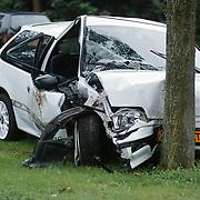 Ongeval Zuiderzee Huizen, auto tegen boom, 3 gewonden