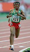 Haile Gebrselassie of Ethiopia leads Kenenisa Bekele (423) in the IAAF World Championships in Athletics at Stade de France on Sunday, Aug, 24, 2003.