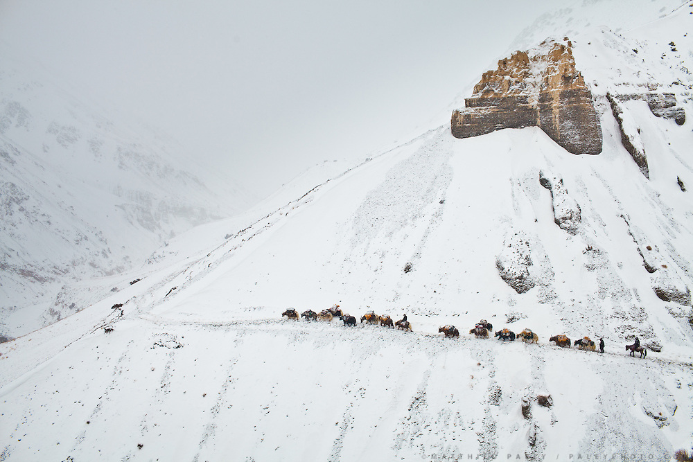 """High above tree line, a winter caravan of traders relies on their sure-footed yaks to traverse a high pass - the only way up and down from the Afghan Pamir. Never a large tribe, Kyrgyz nomads roamed central Asia for centuries and were infamous for raiding caravans along the Silk Route...From Zan Kuk to Zardibar (""""yellow door""""). ..Trekking back down from the Little Pamir, with yak caravan, over the frozen Wakhan river."""