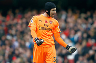 Petr Cech of Arsenal celebrates Arsenal's victory at full time. Premier league match, Arsenal v Swansea city at the Emirates Stadium in London on Saturday 28th October 2017.<br /> pic by Steffan Bowen, Andrew Orchard sports photography.