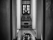 10 APRIL 2017 - BANGKOK, THAILAND:  A cat in a hallway at Wat Ratchanatdaram, a Buddhist temple in Phra Nakhon district, Bangkok. It means Temple of the Royal Niece, the temple was built on the orders of King Nangklao (Rama III) for the princess granddaughter, Somanass Waddhanawathy in 1846.      PHOTO BY JACK KURTZ