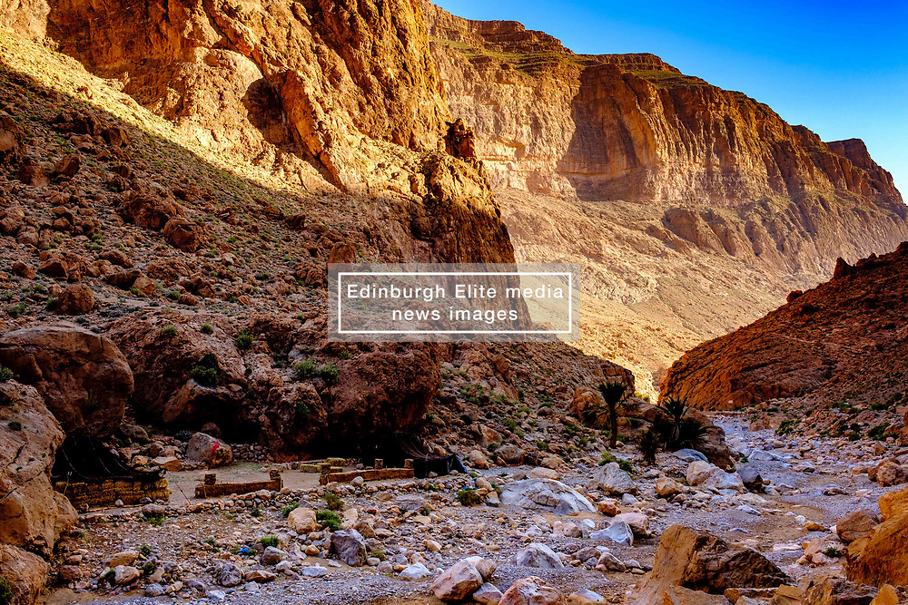 The Todra Gorge in the early morning, Morocco<br /> <br /> (c) Andrew Wilson   Edinburgh Elite media