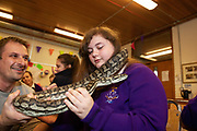 12/11/2018 Repro free: Galway Science and Technology Festival, the largest science event in Ireland, runs from 11-25 November featuring exciting talks, workshops and special events. Full programme at GalwayScience.ie. Martyna Laskiewicz  from Our  Lady's College Galway  with a python from The Bug Doctors collection ( Dr Michel Dugon- NUI Galway) Photo:Andrew Downes, Xposure.
