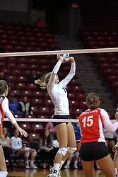 29 October 2011: Megan Bober sets up a strike During a match between the Creighton Bluejays and the Illinois State Redbirds at Redbird Arena in Normal Illinois