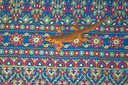 Common house gecko (Hemidactylus frenatus) sitting on a colorful carpet in a lodge in Sepilko, Sabah, Borneo.