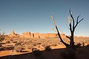 Desert Landscape, Arches National park, Utah, United States of America
