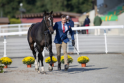 Rüegg Patrick, SUI, Fifty Fifty<br /> FEI EventingEuropean Championship <br /> Avenches 2021<br /> © Hippo Foto - Dirk Caremans<br />  22/09/2021