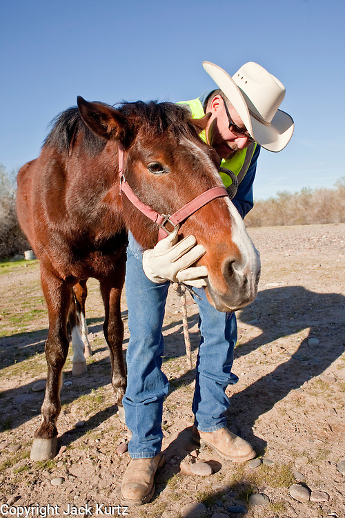 16 MARCH 2010 -- BUCKEYE, AZ: Mark Eshenbaugh and his horse Colorado after the horese was rescued near Buckeye Tuesday morning. Colorado has spent the last several days marooned on a sandbar in the middle of the river after he and his owners were nearly swept downstream during a trail ride.  PHOTO BY JACK KURTZ
