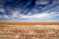The Great Plains, Texas