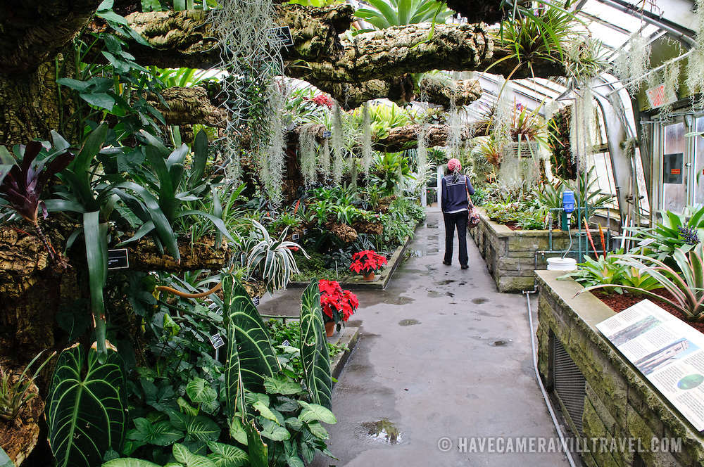 Inside Montreal's Botanical Garden, one of the world's largest indoor botanical gardens featuring a range of different environments from orchids to spices to cacti.