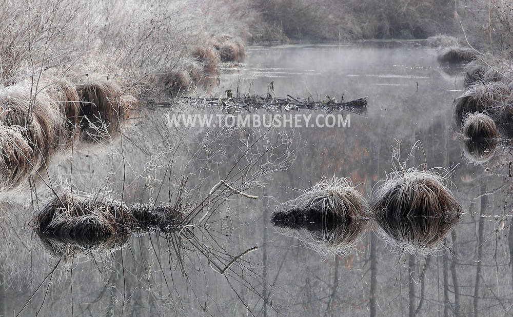 Summitville, New York - Frost coats the grass and bushes by the D&H Canal on the morning of Dec. 10, 2011. ©Tom Bushey / The Image Works