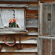 Window and door of old cabin, Warren ghost town, Idaho