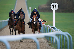 23rd November 2017 - Michael Owen Horse Racing - Former footballer Michael Owen (R) takes to the gallops alongside retain jockey Richard Kingscote (C) at Manor House Stables in Cheshire ahead of his first ever race as a jockey - Photo: Simon Stacpoole / Offside.