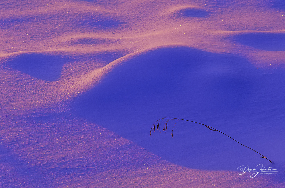 Evening light on the snow at the edge of Kelly Lake, Greater Sudbury, Ontario, Canada