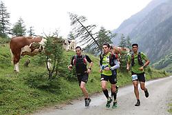 25.07.2015, Dorfertal, Kals, AUT, Grossglockner Ultra Trail, 50 km Berglauf, im Bild Läufer bei den Almen im Kalser Dorfertal // runners during the Grossglockner Ultra Trail 50 km Trail Run from Kals arround the Grossglockner to Kaprun. Kals, Austria on 2015/07/25. EXPA Pictures © 2015, PhotoCredit: EXPA/ Stringer