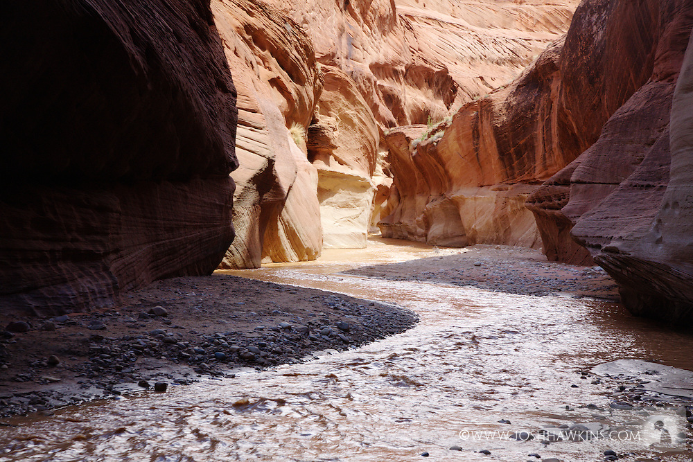 Paria River Canyon and narrows in Utah from the White House Trail Head in the Grand Staircase-Escalante National Monument
