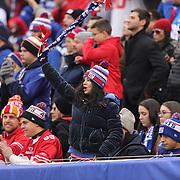 A New York Giants fan in the crowd during the New York Giants V San Francisco 49ers, NFL American Football match at MetLife Stadium, East Rutherford, NJ, USA. 16th November 2014. Photo Tim Clayton