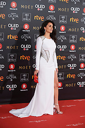 Penelope Cruz attends Goya Cinema Awards 2018 at Madrid Marriott Auditorium on February 3, 2018 in Madrid, Spain. 03 Feb 2018 Pictured: Penelope Cruz. Photo credit: MEGA TheMegaAgency.com +1 888 505 6342