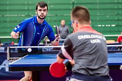 (BRA) PEREIRA STROH Israel during 16th Slovenia Open - Thermana Lasko 2019 Table Tennis for the Disabled, on May 8th, 2019 in Dvorana Tri Lilije, Lasko, Slovenia. Photo by Grega Valancic / Sportida