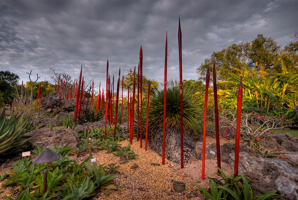 "Dale Chihuly 2007 Exhibition in Fairchild Tropical Gardens In Miami, Chihuly call this ""Red Pups""  Dale Chihuly is recognized artist for his work with glass."
