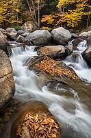 Autumn color along the New Haven River near Bristol, Vermont