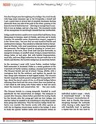 Orianne Society Indigo Magazine article Page 2