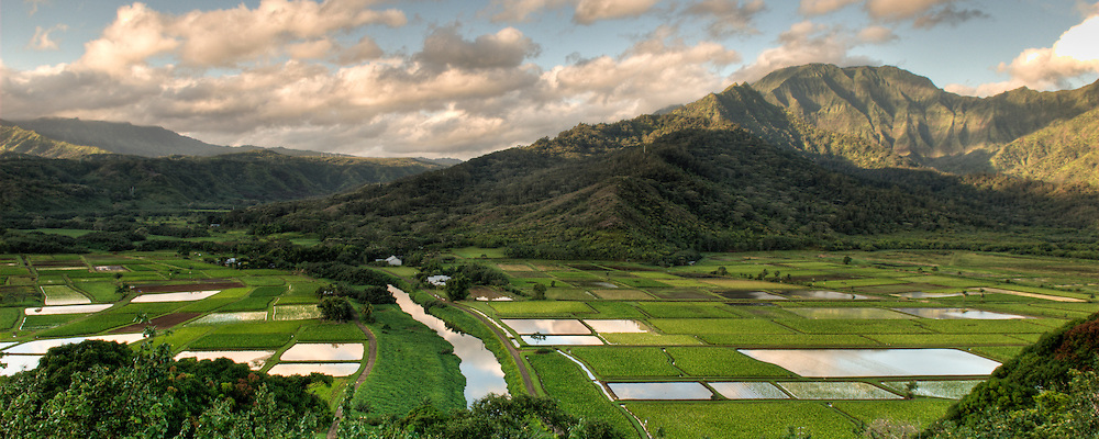 A panoramic image of Hanalei Valley on the island of Kauai, Hawaii.
