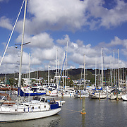 Yachts moored in the Town basin marina, Whangarei, New Zealand,  23rd November 2010. Photo Tim Clayton.
